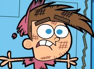 Fairly OddParents, Timmy Picture
