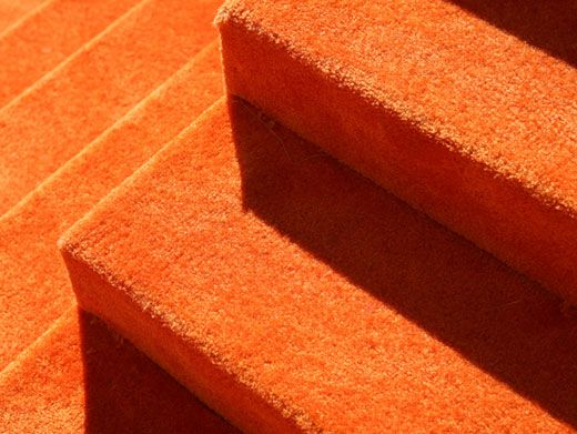 The Carrot-Colored Carpet|Here it is! The Orange Carpet, all rolled out and ready for all of our fave stars and celebs! So excited!
