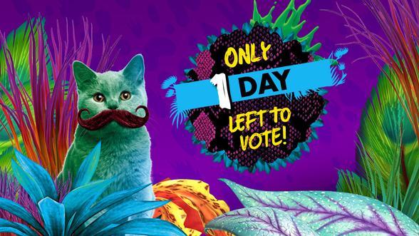 Rock the vote! Help your fave noms win a blimp!